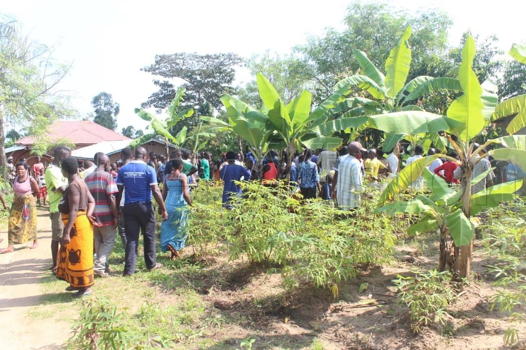 Residents gather around the crime scene in Bundibugyo on Saturday. Photos by Geoffrey Nyamwongera